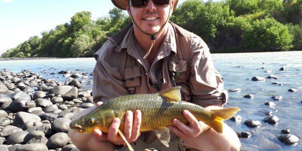 smallmouth_yellowfish_orange_river_south_africa