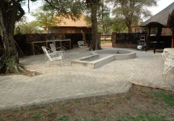 wild widebeest lodging in Limpopo